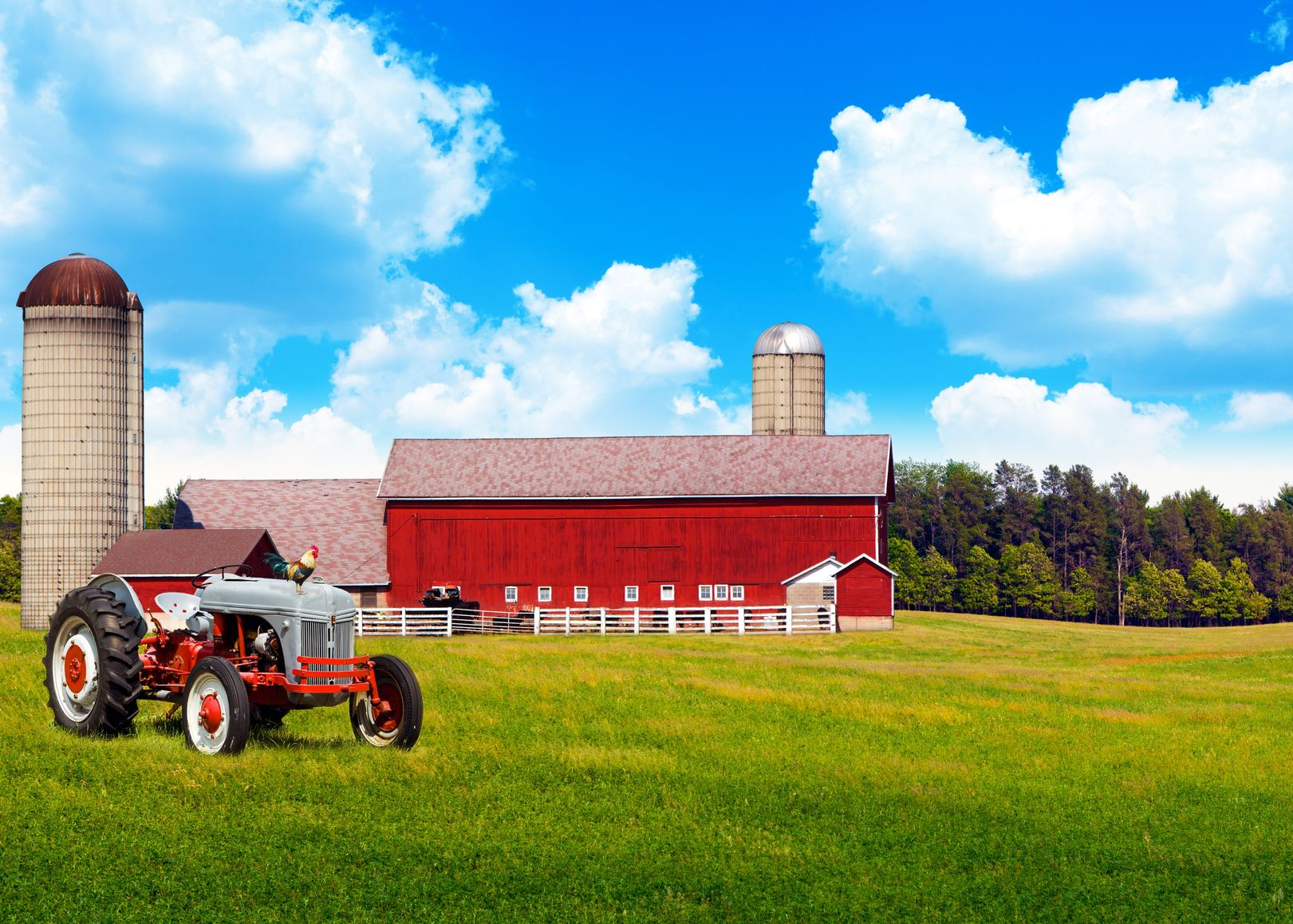 Tallahassee, FL.  Farm & Ranch Insurance